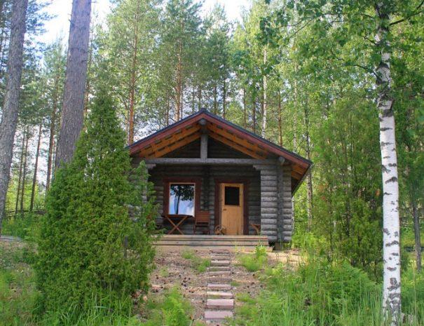 hirsi_sauna_2020