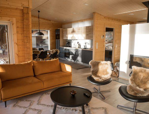 Norppaniemi olohuone ja keittiö